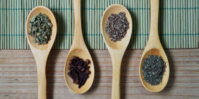 Bockshornklee Anwendung, Wirkung und Rezepte